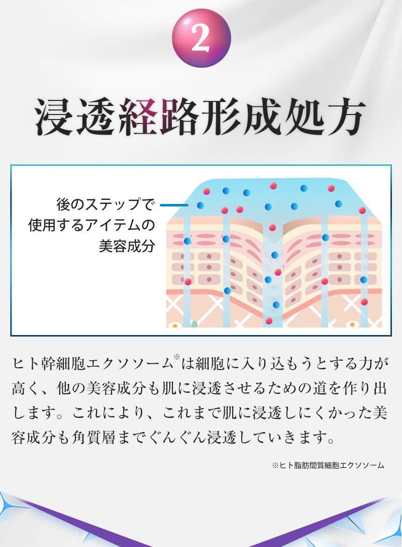 2 浸透経路形成処方